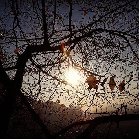 Gedicht Herbsttag Rilke Interpretation Www Mein Lernen At